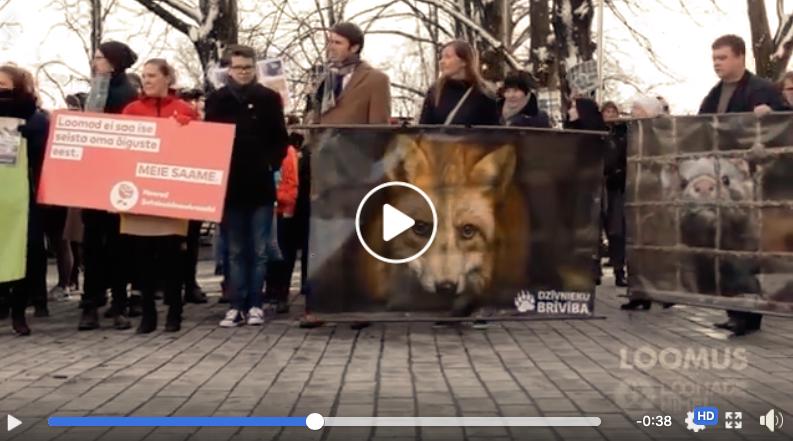 Rongkäik loomade heaks 2017